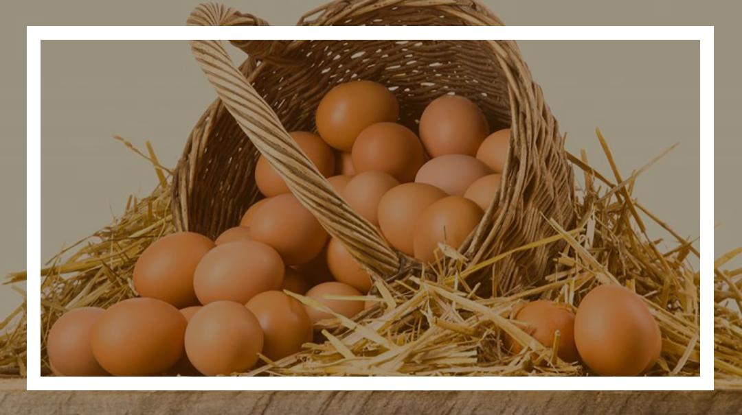 غنیسازی تخممرغ با دانه کتان