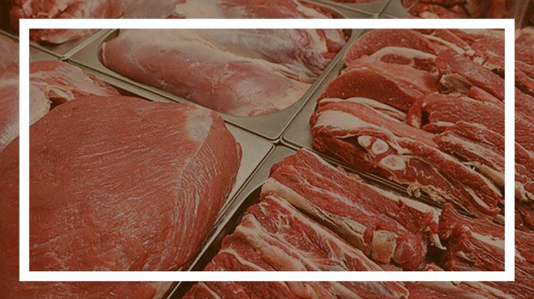 تولید گوشت قرمز دیجیام تکنومیکس