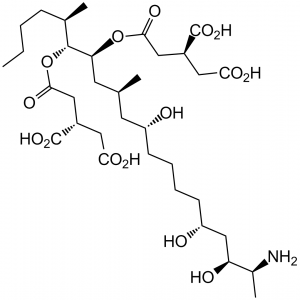 توکسین ها - فومونیسین